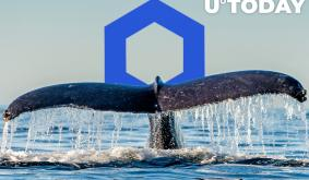 Chainlink Whales Now Hold Almost 25% of Supply: Here's Why It Might Be Concerning